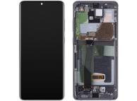 Samsung Galaxy S20 Ultra G988 (No Camera) Grey LCD Display Module